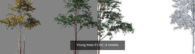 young trees 01-04 3d model max obj mtl 1