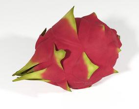 3D model Pitahaya Fruit from Ecuador