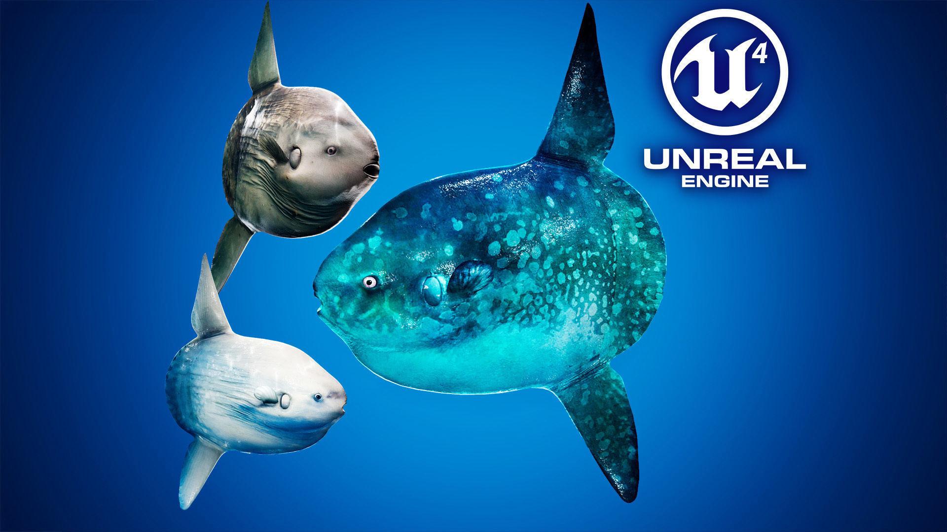 Ocean Sunfish Pack - UE4 | 3D model