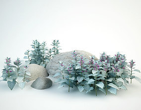 3D model dead-nettles lamium