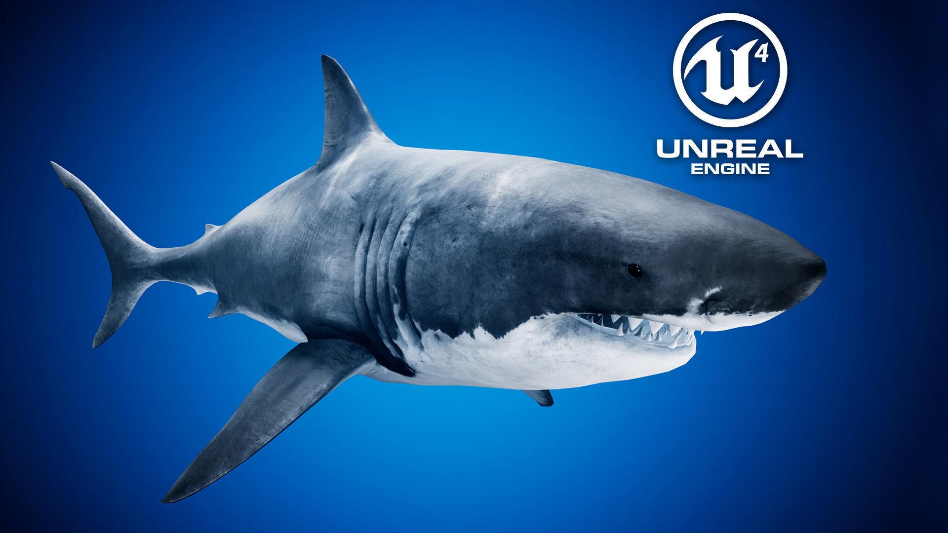 Great White Shark UE4