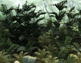 3D asset Set tropical plants 10 types