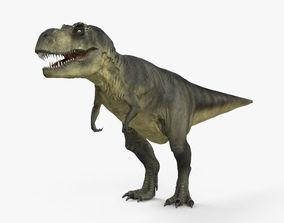 Tyrannosaurus HD 3D model
