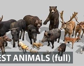 3D model FOREST ANIMALS full version