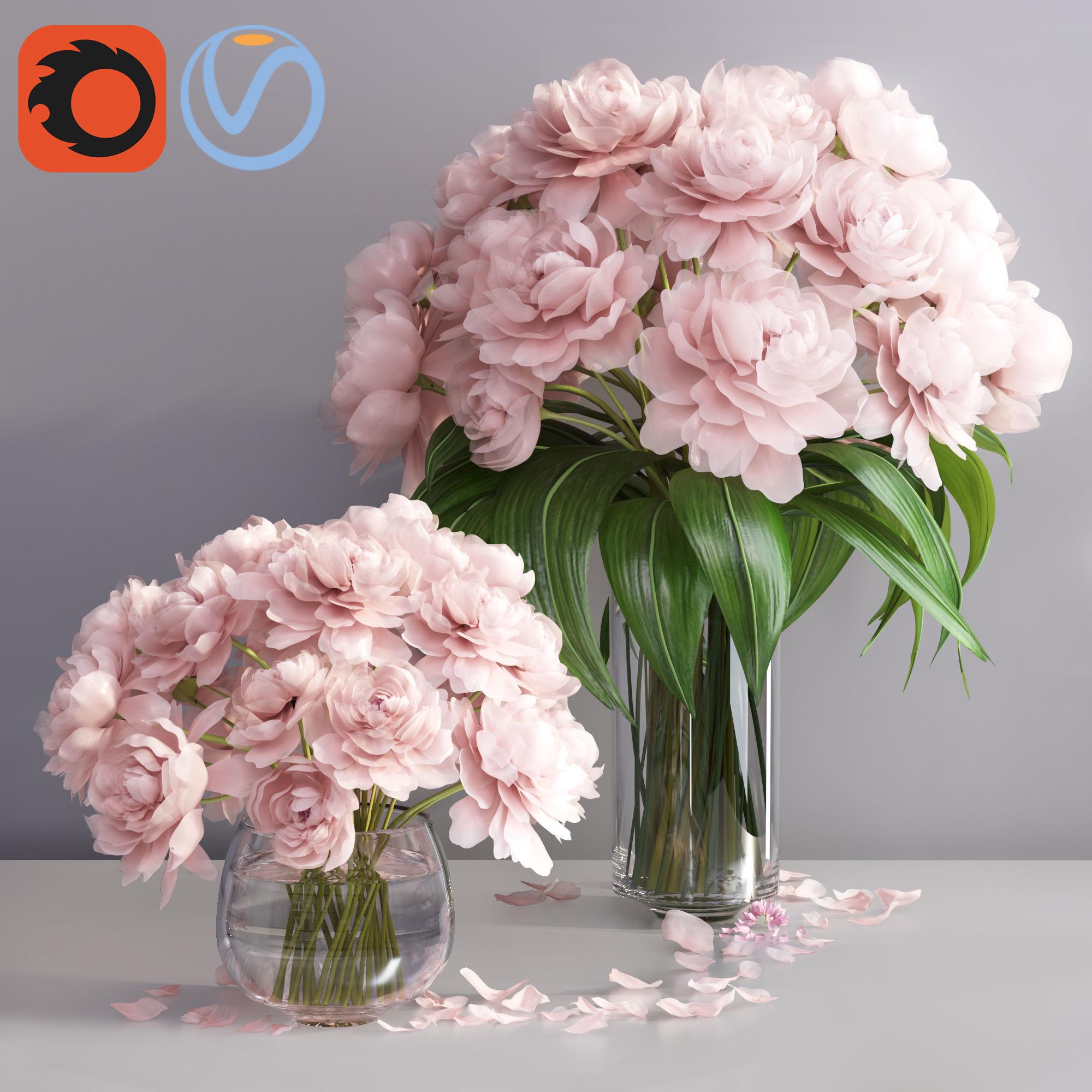 Elegant pink peonies in 2 vases