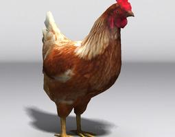 3d asset lowpoly hen VR / AR ready