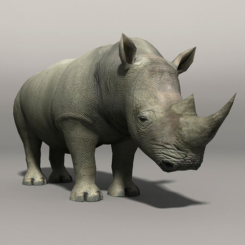 rhino 3d model low-poly max ma mb 1