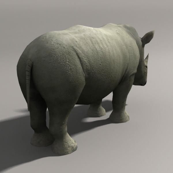 3D Model Rhino VR / AR / Low-poly MAX MA MB
