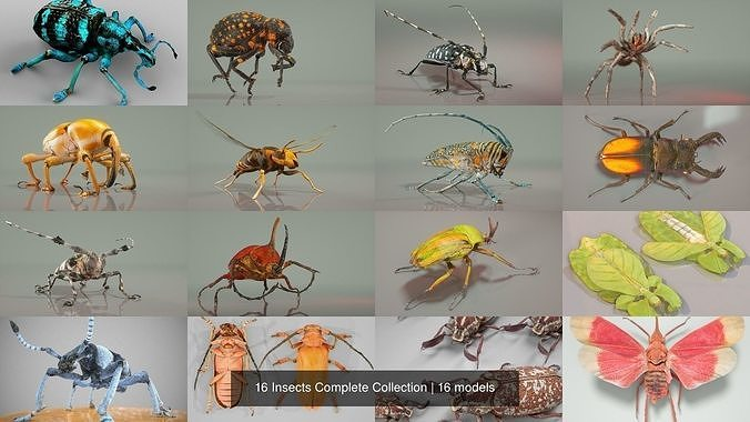 16 insects complete collection 3d model obj mtl fbx 1