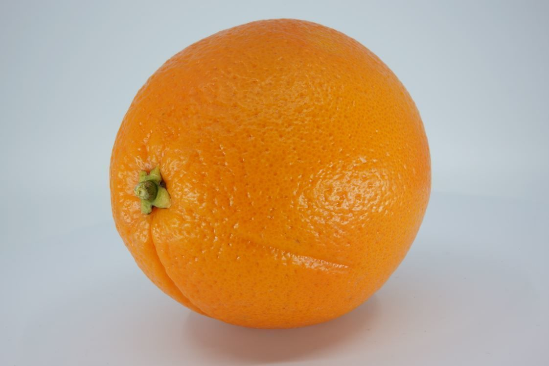 Realistic - Orange