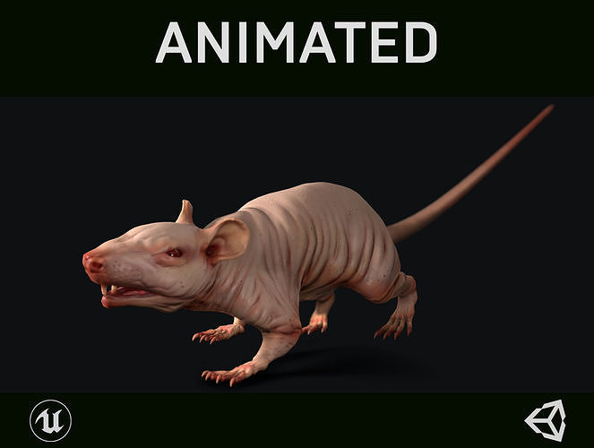 naked rat 3d model low-poly rigged animated max fbx unitypackage prefab 1