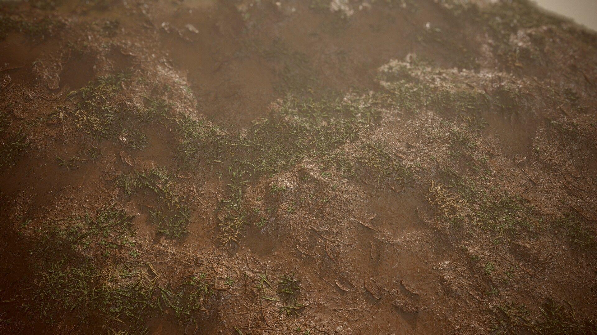 Mud Grass
