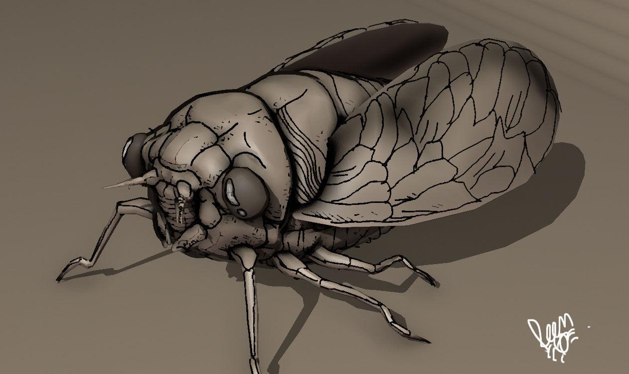grease pencil cicada bug