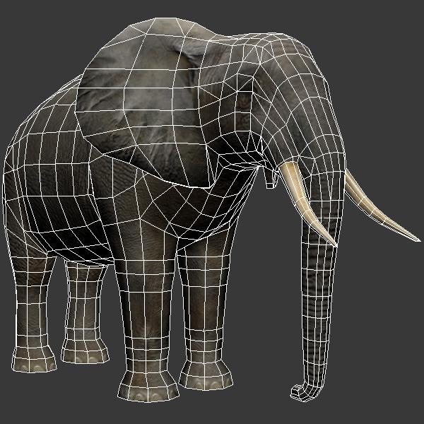 3D Model Elephant And Rhino VR / AR / Low-poly MAX OBJ FBX