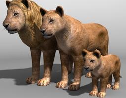 3D asset Lion Family 19838