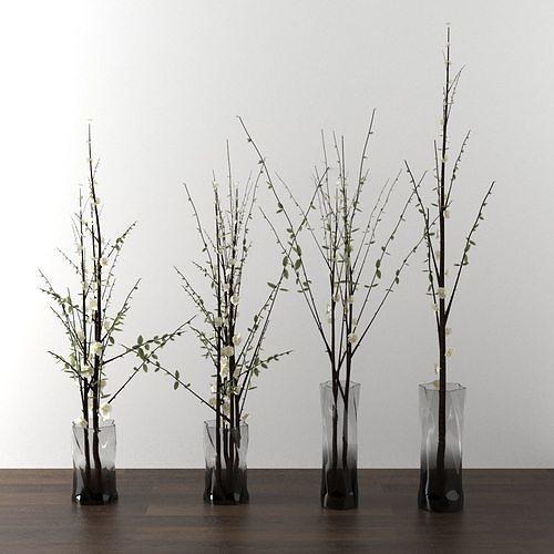dry decorative plant set