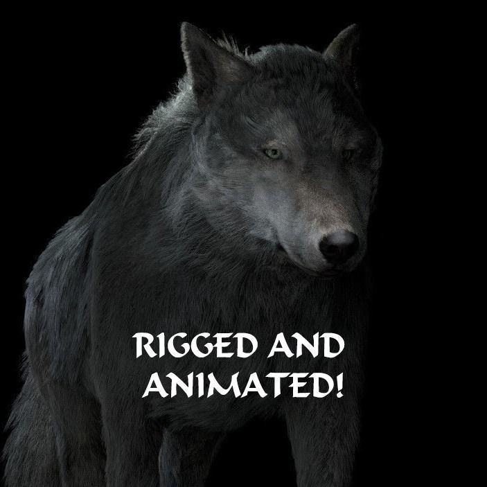 Grey wolf rigged and animated and polar light