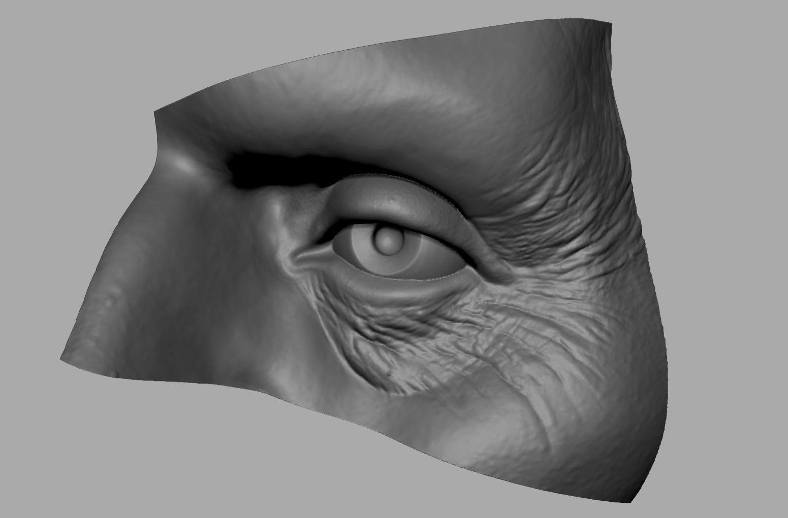 Eye Printable