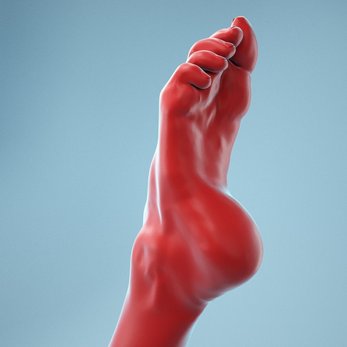 Crunched Toes Realistic Foot Model  04