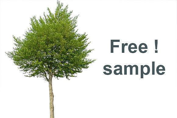 Free 3d Trees
