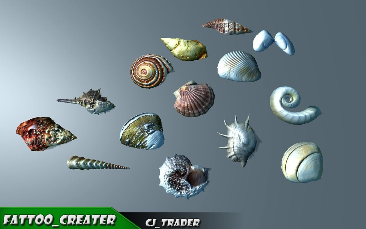 Lowpoly Under Water Shell Collection Pack 3d model