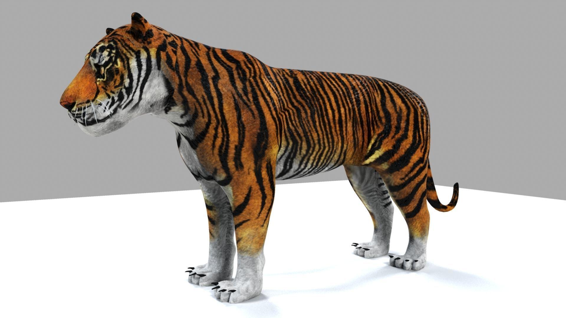 3D STL Model # THE RELAX OF TIGER # for CNC Aspire Artcam 3D Printer 3D MAX