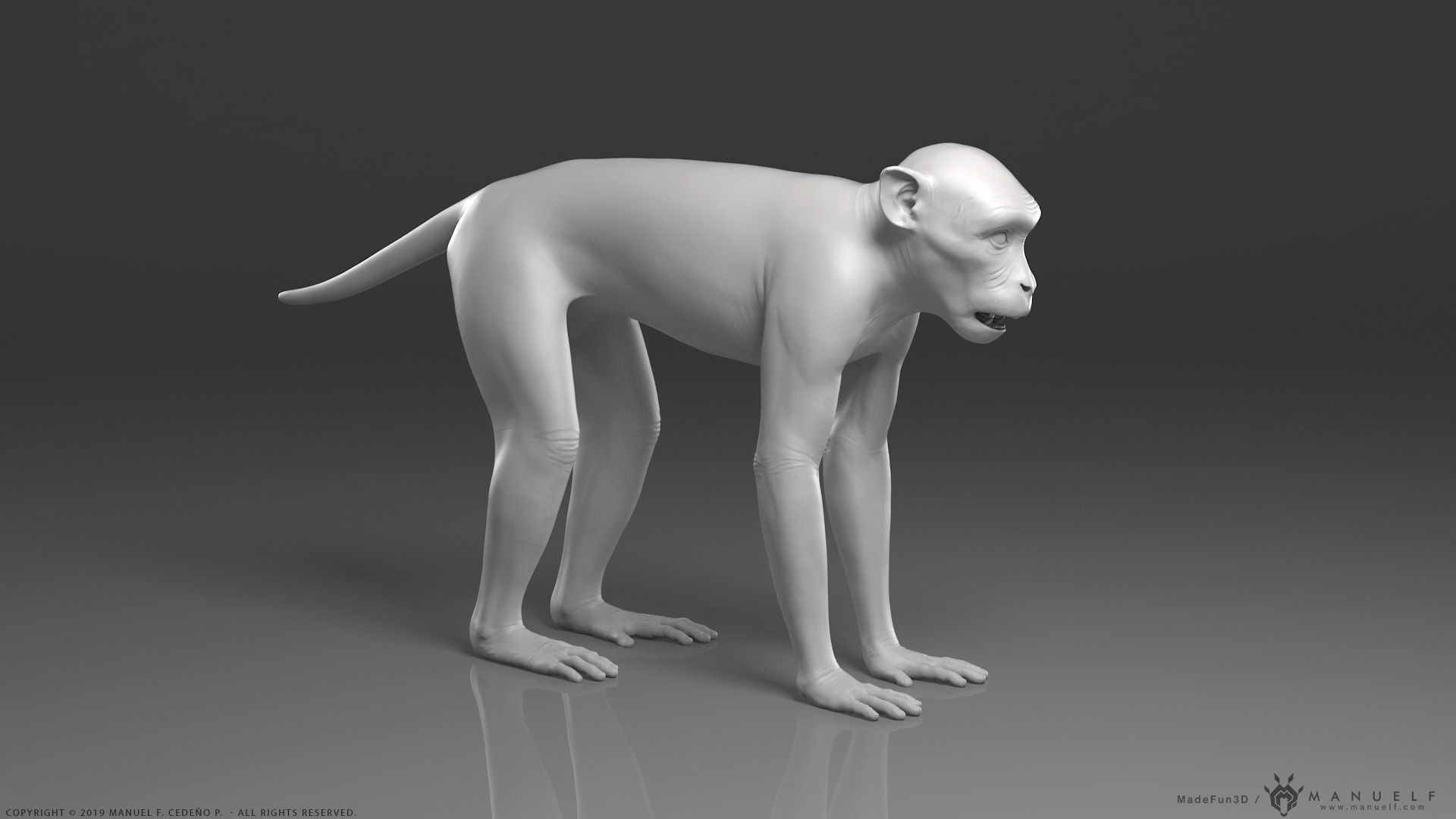 Rhesus Macaque Monkey - Highpoly Sculpture