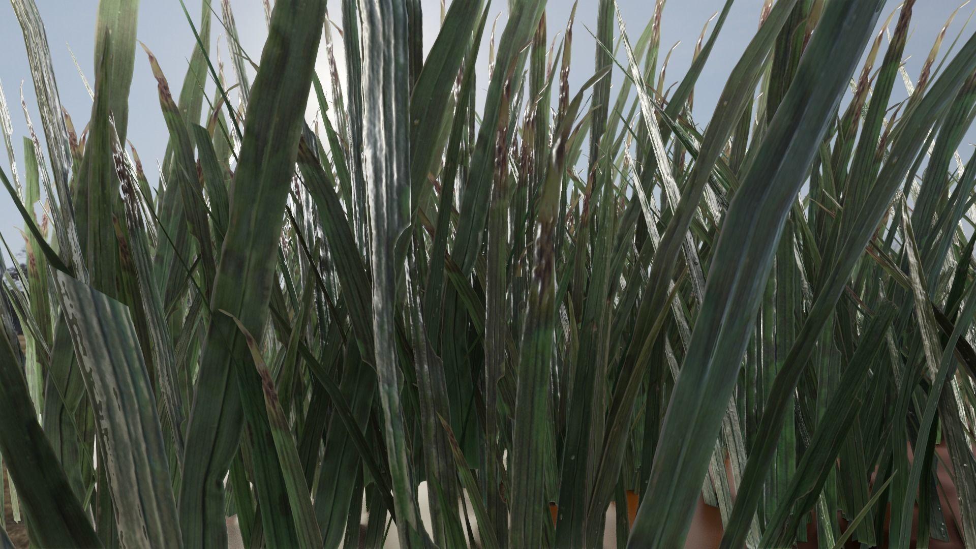 ULTRA REALISTIC GRASS FOLIAGE