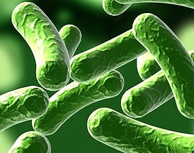 3D model Bacillus 01