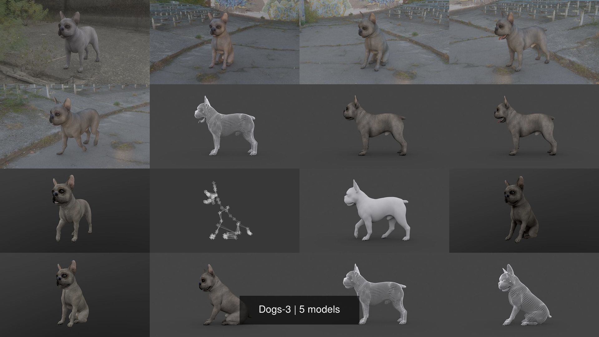 Dogs-3