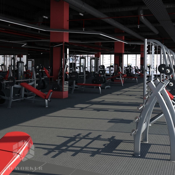 Big Fitness Gym