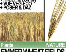 emmer wheat fields poser daz vfx animation 3d model obj 3ds c4d vue pz3 pp2