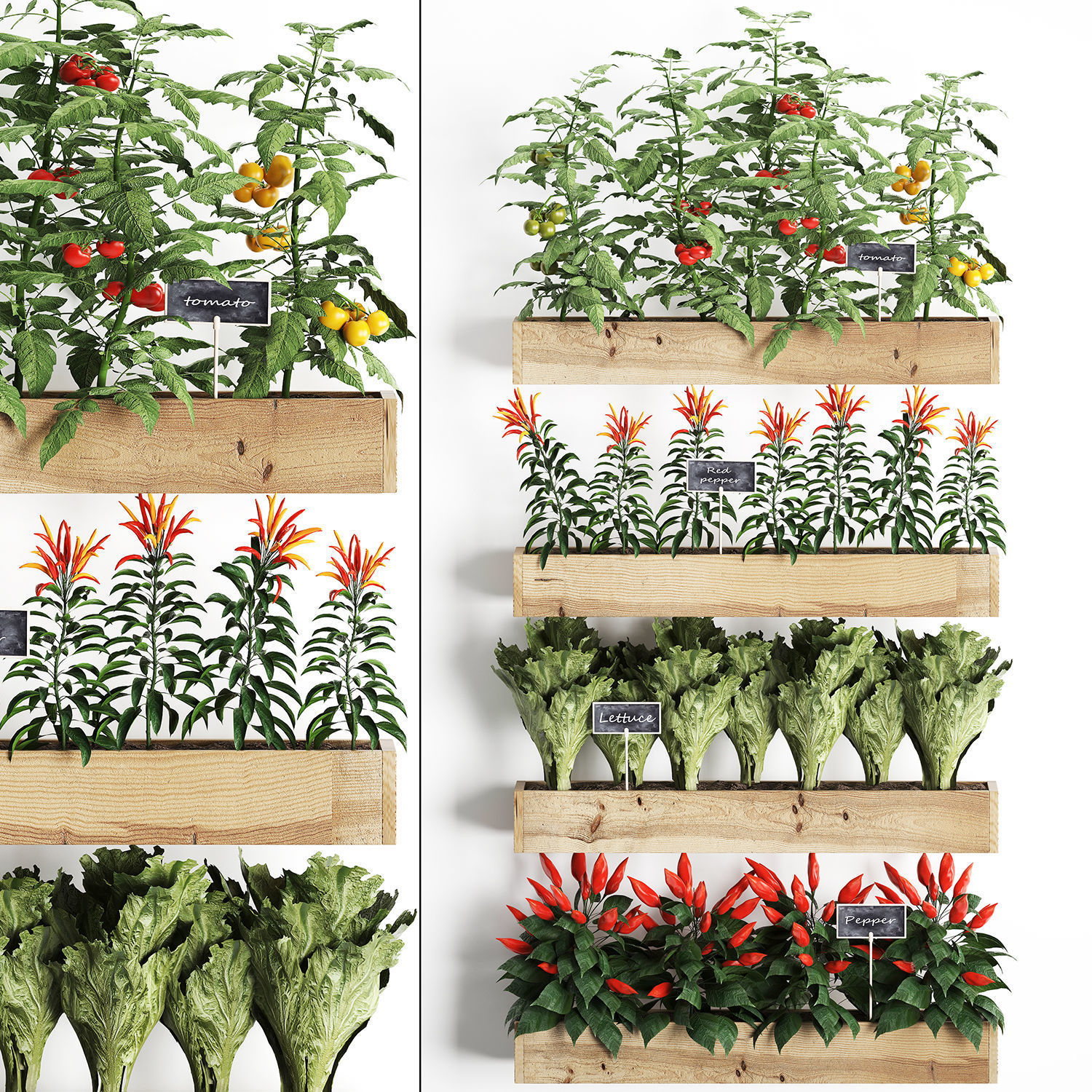 3d Decorative Plants For The Kitchen On Wooden Box