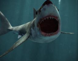 great white shark 3d model obj fbx ma mb