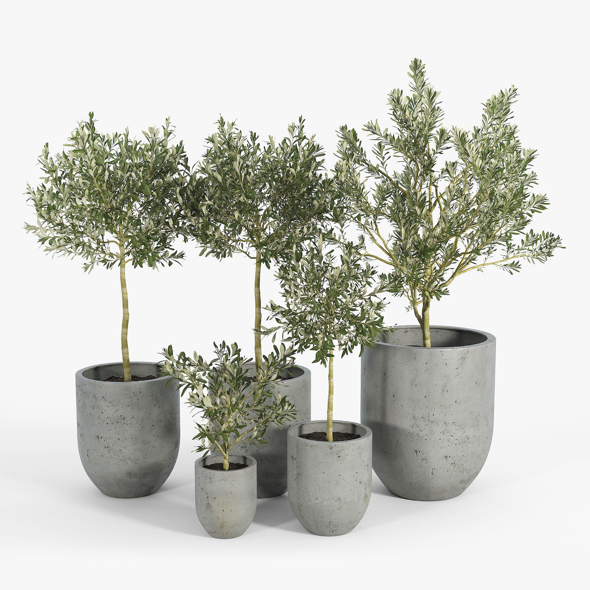 Neo Planter Extra Small Lead