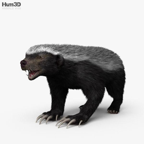 Honey Badger HD
