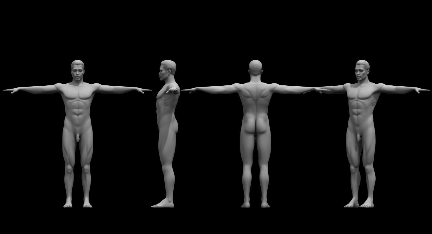 man ful figure 3d model