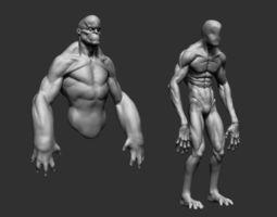 body forms 3d model obj ztl