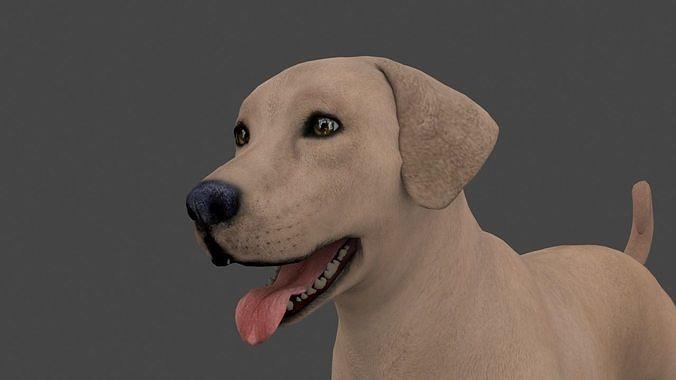 MLAB-022 Animated Dog