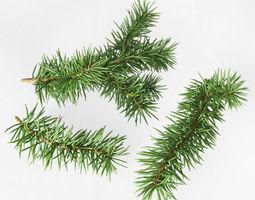 3d fir branches