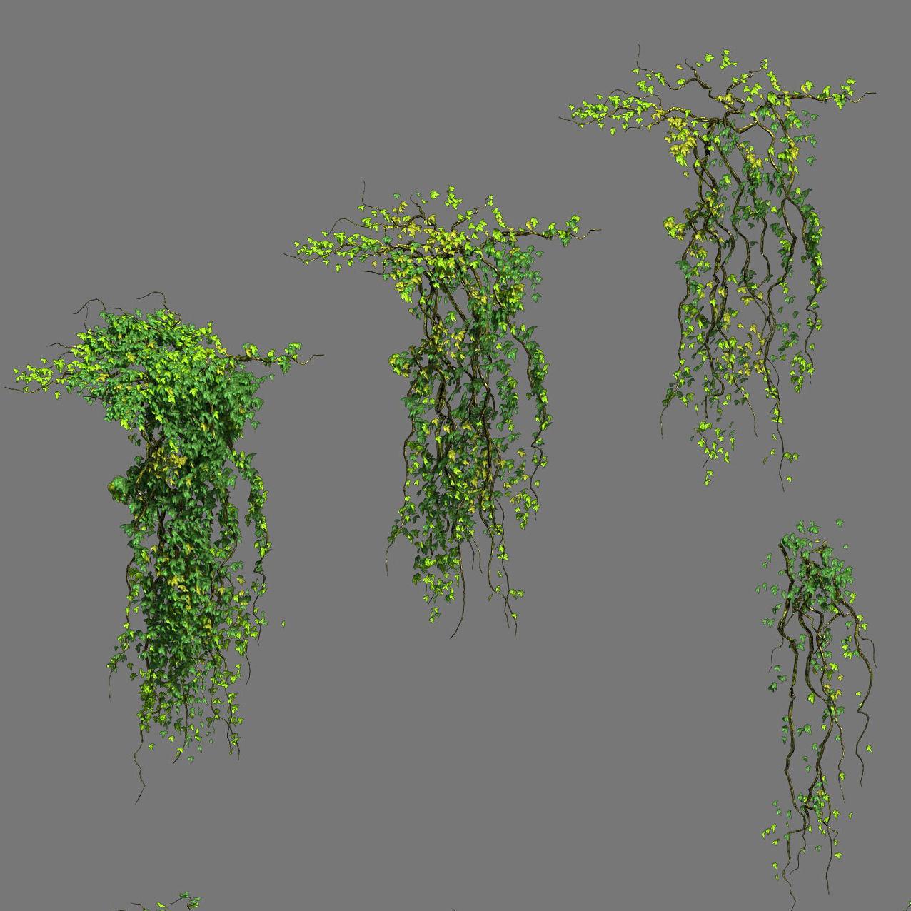 Decoration - vines