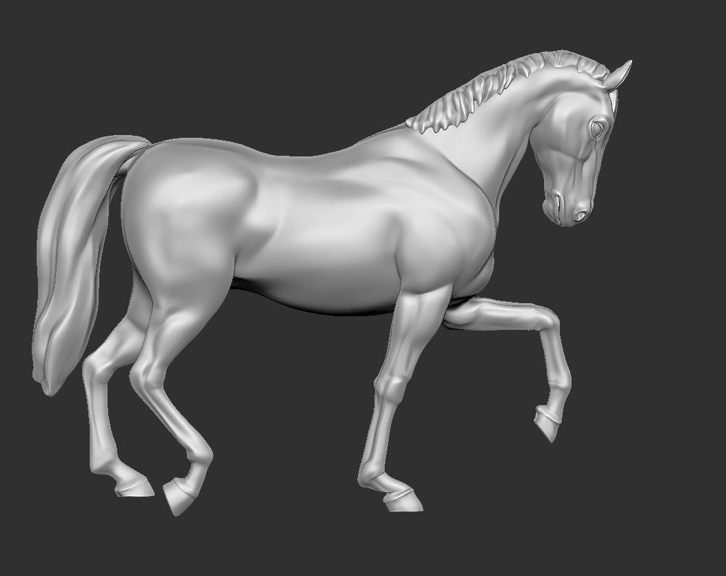 Horse - Walk