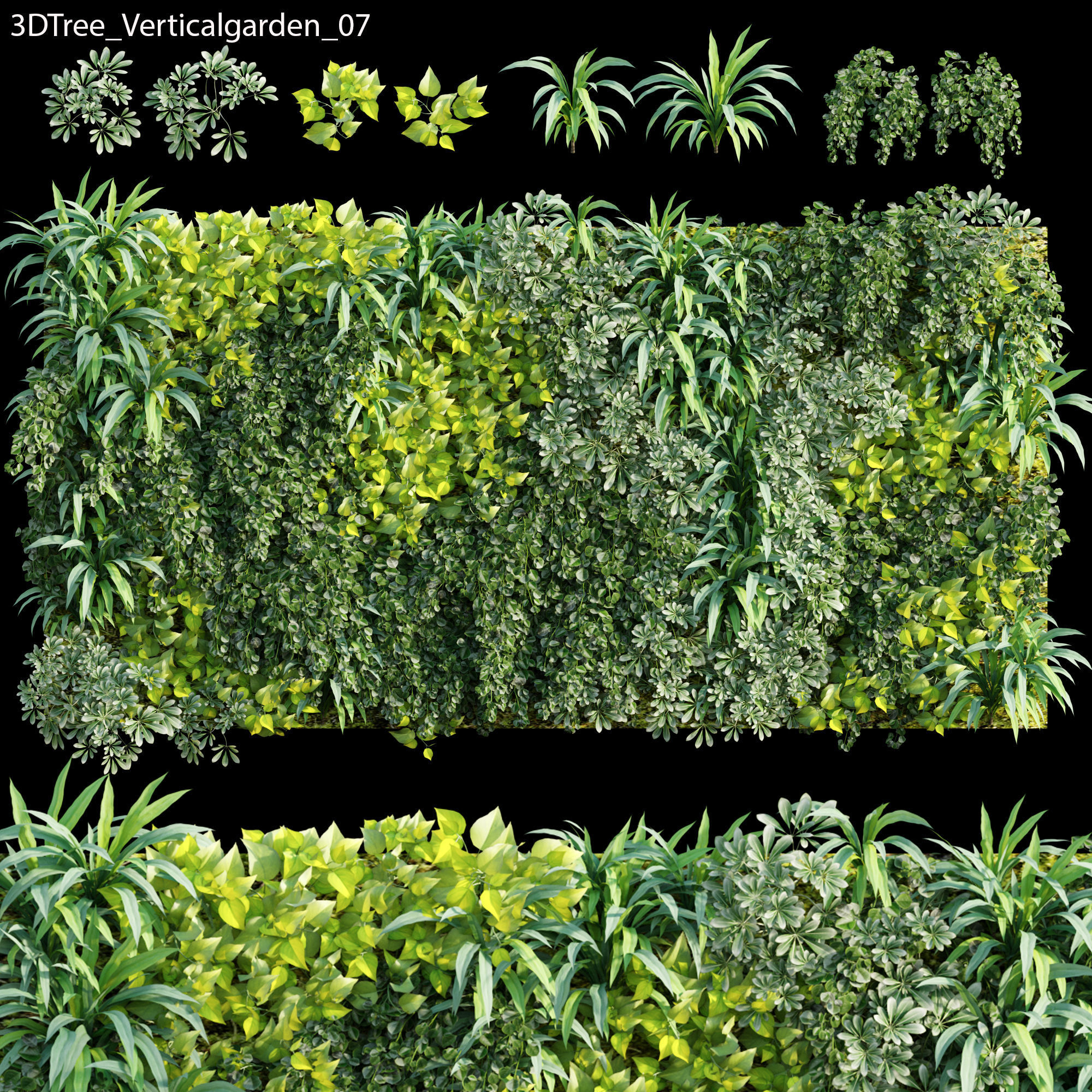 Verticalgarden - Green wall 07