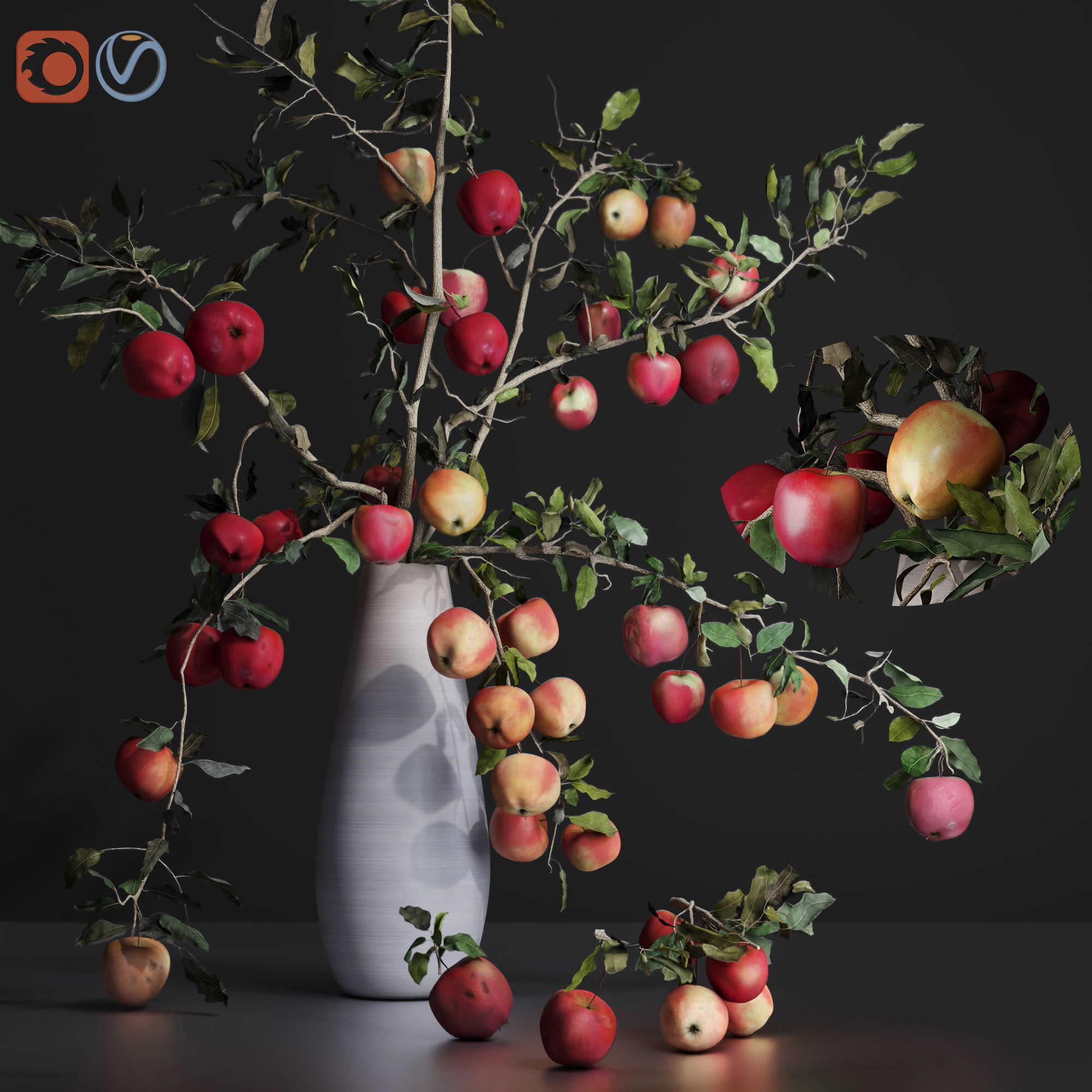 Red Cherry tomato apple branches Dry leaves Vase