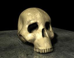 skull hominid 3d
