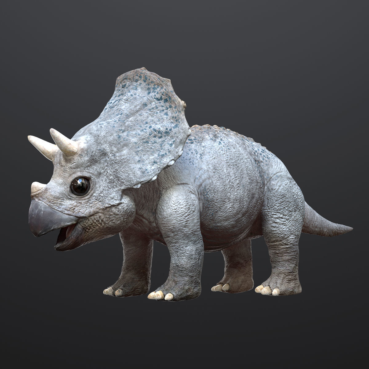Triceratops Baby 3D Rigged model