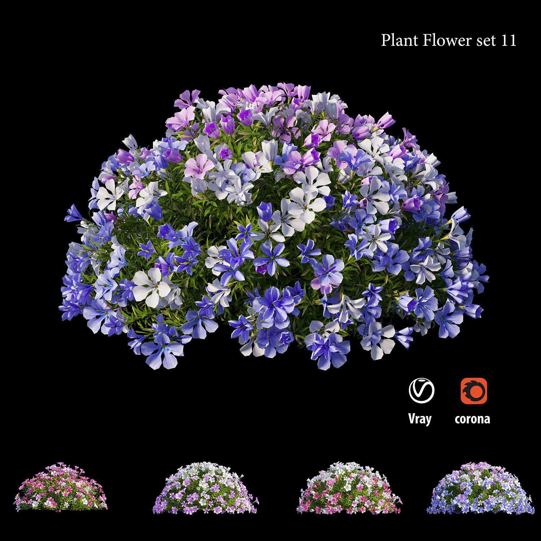 Plant flower set 11