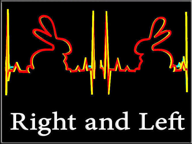 Rabbit heartbeat Curved - Right and Left