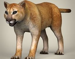 realtime 3d model low poly realistic mountain lion