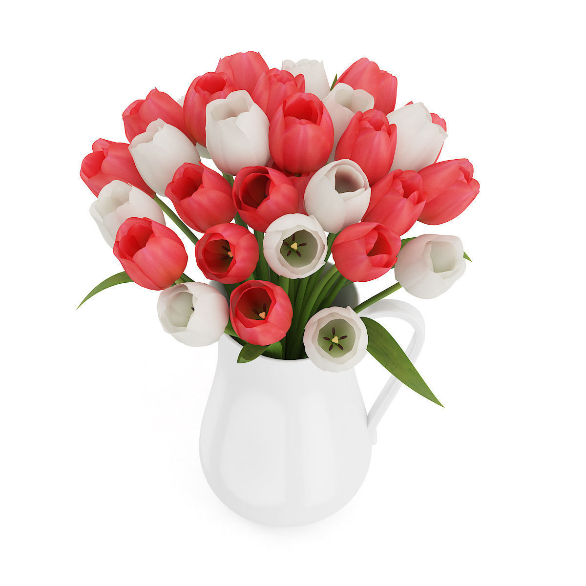 3d Model Red And White Tulips Cgtrader